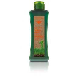 Biokera treated hair shampoo - Pažeistų plaukų šampūnas su makadamijos ir aviečių aliejumi
