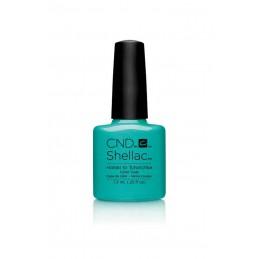 Shellac nail polish - HOTSKI TO TCHOTCHKE